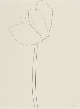 Ellsworth Kelly CYCLAMEN